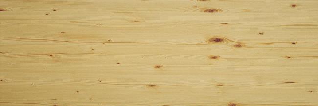 Le essenze legnose europee